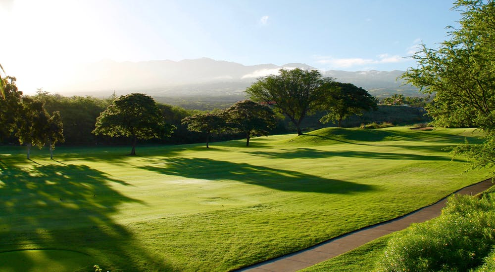 The Best Golf Clubs in the UK