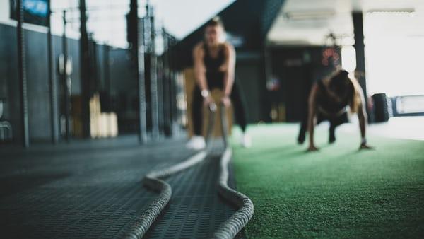 Gym training ropes