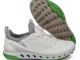 Ecco Biom Cool Pro Gore-Tex Golf shoes.