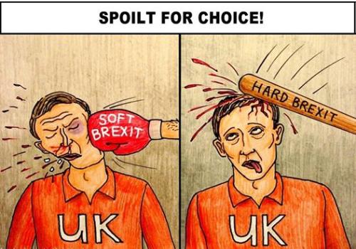 Morning Update - Spoilt for choice