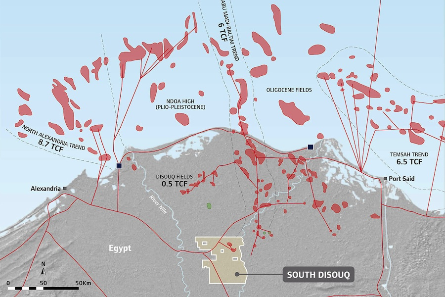 Egypt-South-Disouq SDX