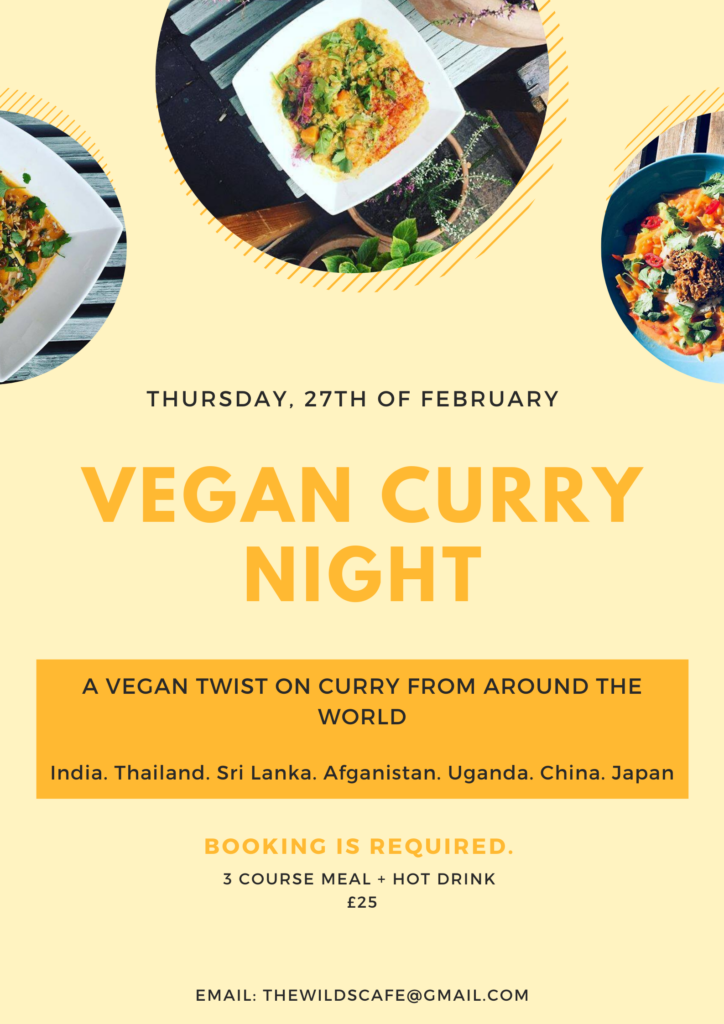 vegan curry night