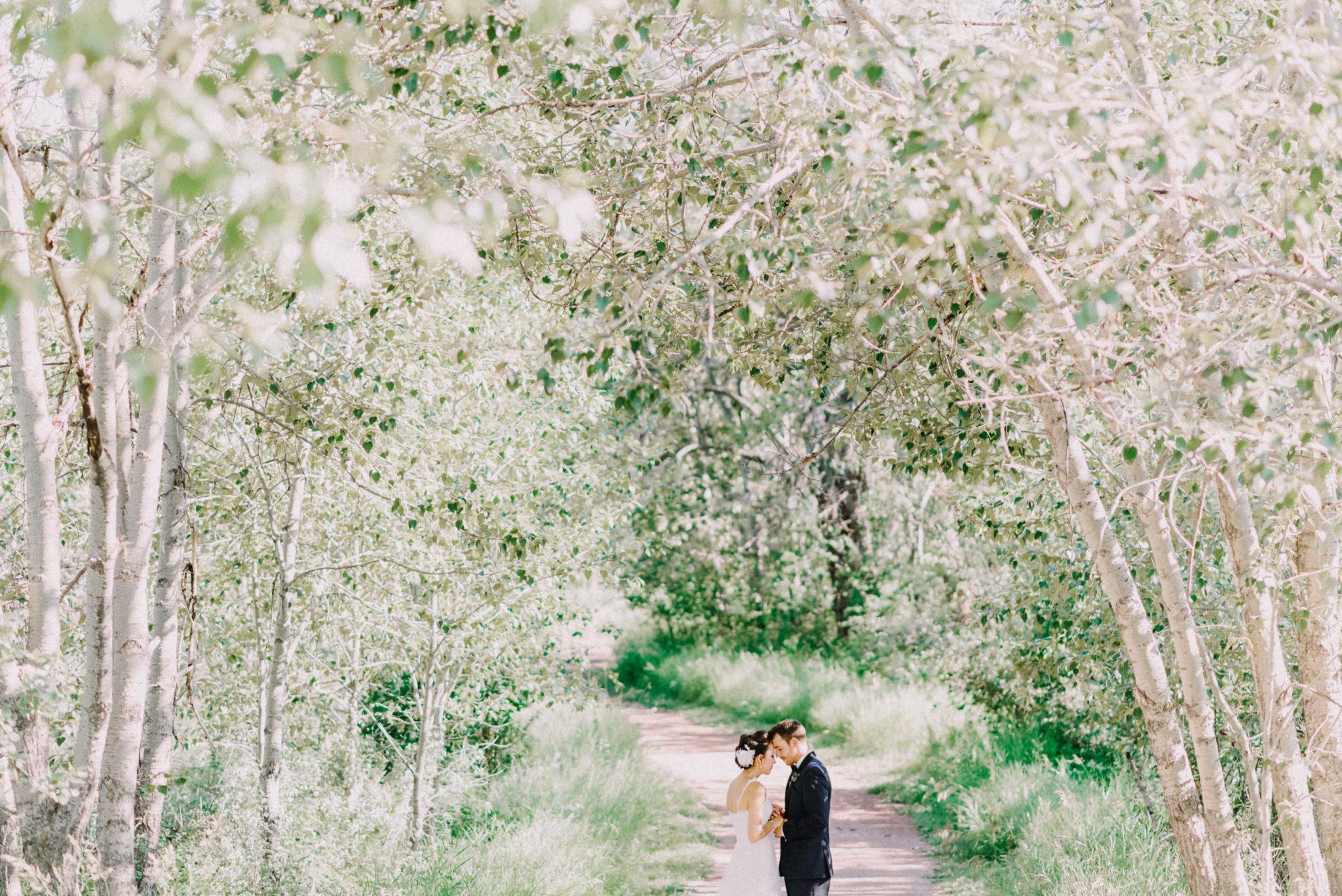 View More: http://barbararahalphotography.pass.us/jessi_david
