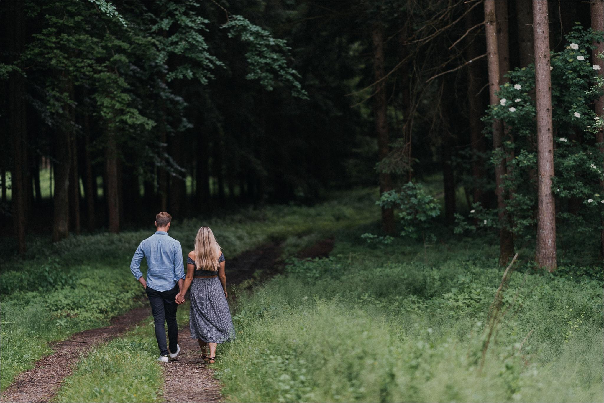 Woods are around Chiemsee