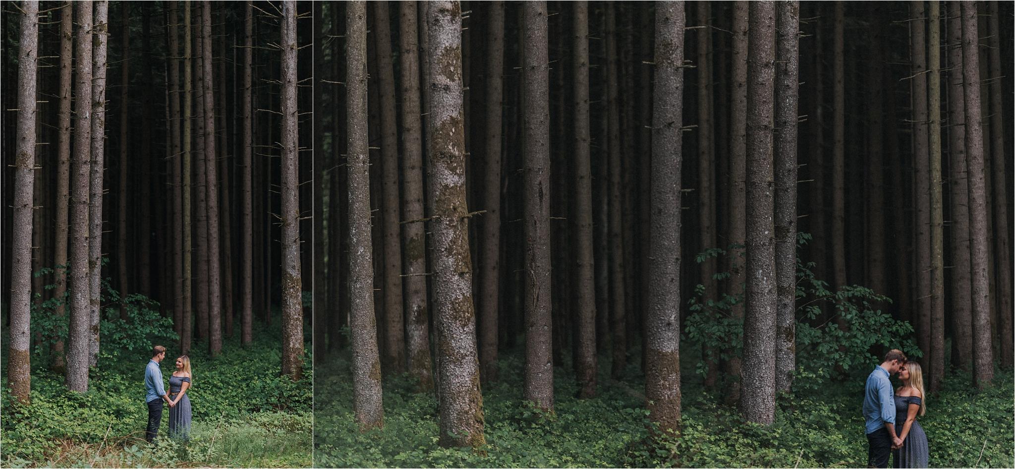 the beautiful woods around Chiemsee