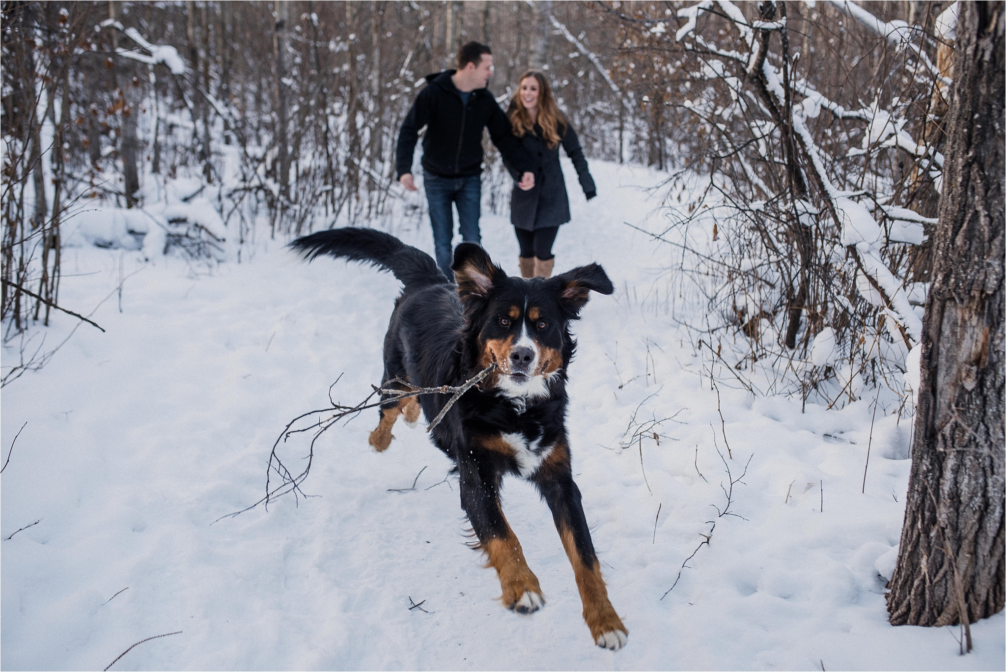 Snowy Sherwood Park Engagement Session I Michelle + Jonathan + Charlie