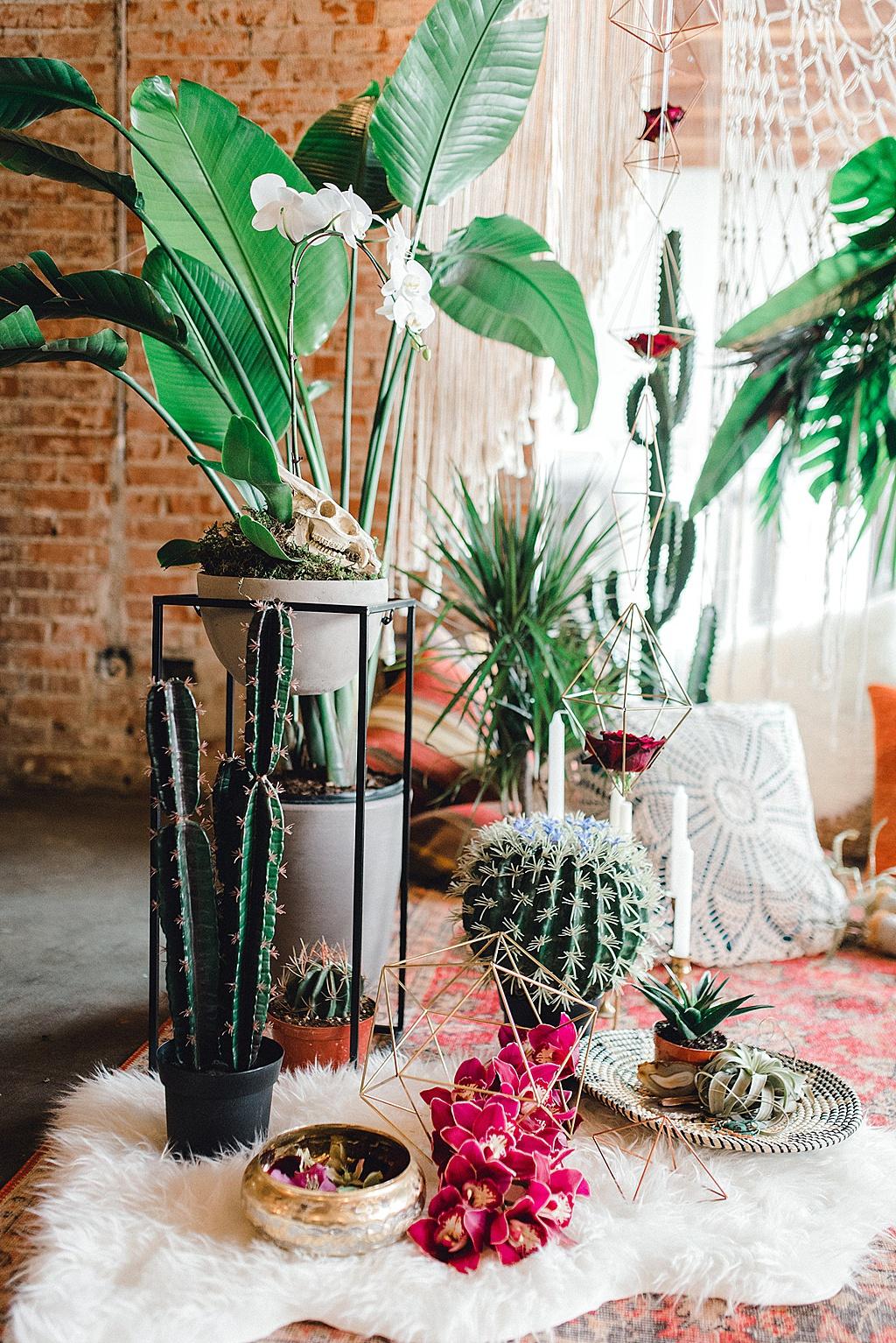 gws-feature-tropical-oasis-elopement-barbara-rahal