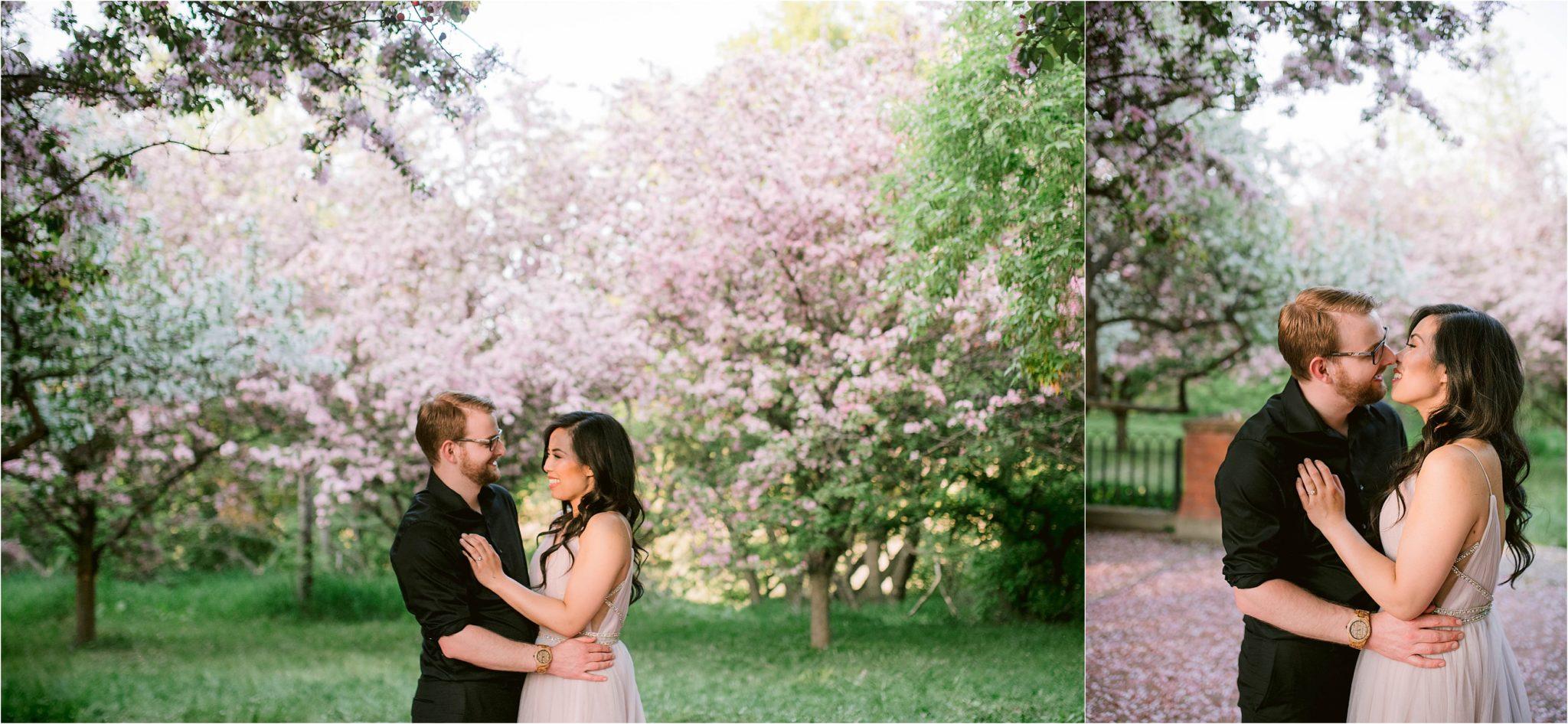 Romantic Cherry Blossoms Engagement Photos in Edmonton