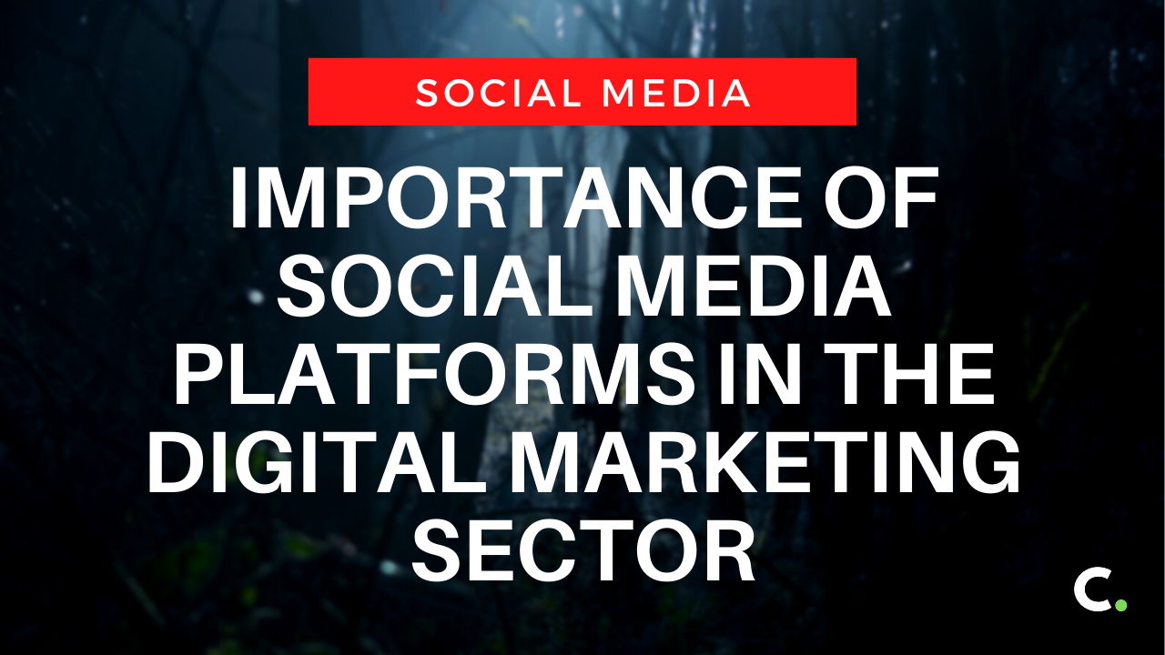 Importance of social media platforms in the digital marketing sector