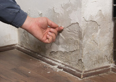Is-rising-damp-covered-by-buildings-insurance-768x432