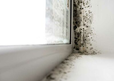 damp_causes_symptoms_treatments_windowsill_mould_516787591_768