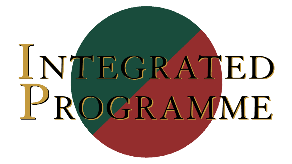 Integrated Programme English tuition