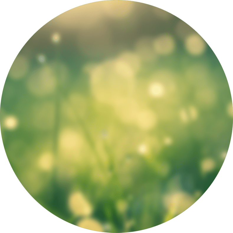 cs-blur-bokeh-circle