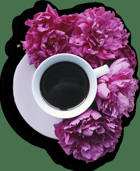 cs-cup-flower
