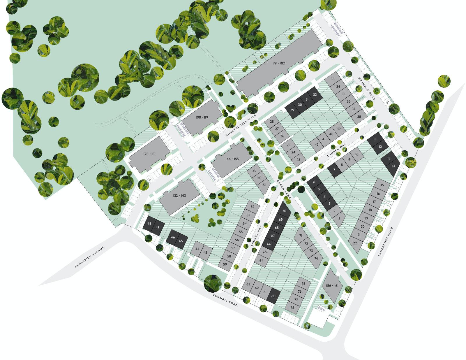 Elderberry Walk Siteplan