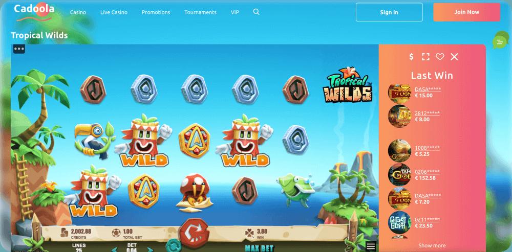 Rabcat Gaming Tropical Wilds Slot Game Microgaming