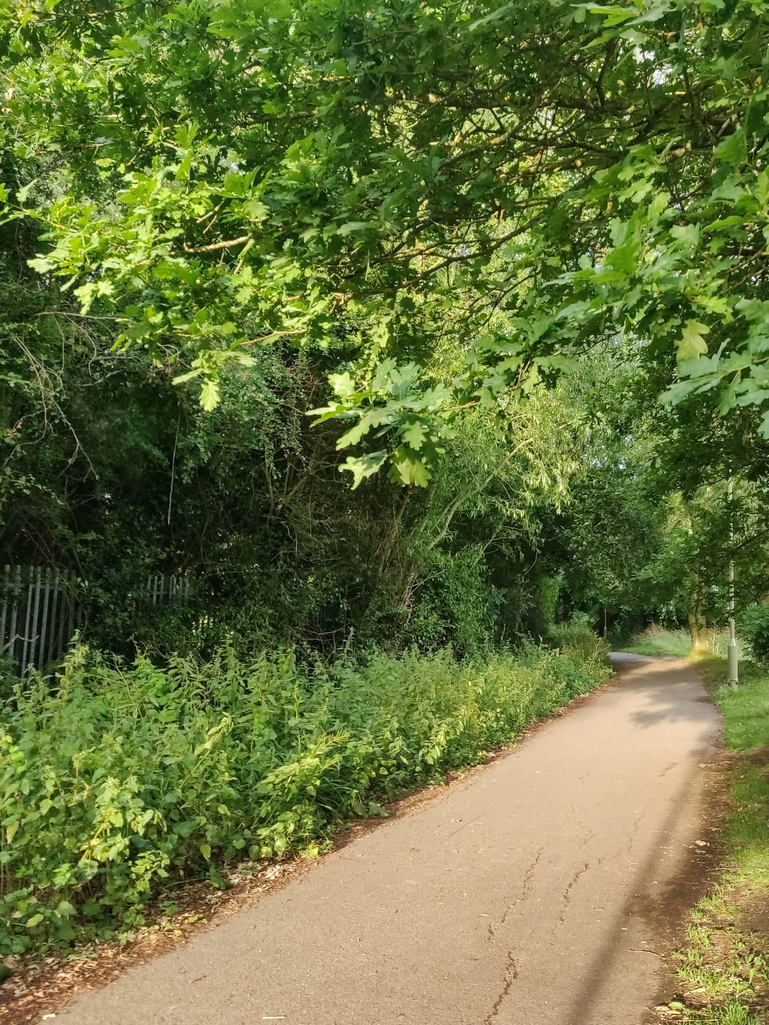 oxford-to-amersham-bike-trail-repair
