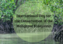 International Day for the Conservation of the Mangrove Ecosystem 2020