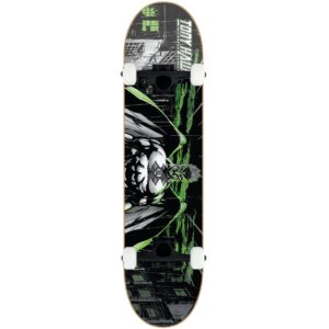 Tony Hawk SS 540 Complete Skateboard – Wasteland – 8″