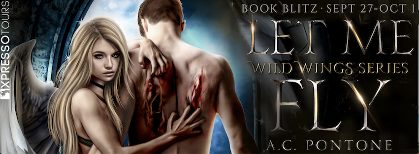 LetMeFlyBanner - Up Up and Away! Book Blitz