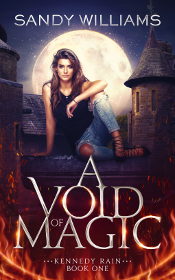 void - Hotel Void: Book Review