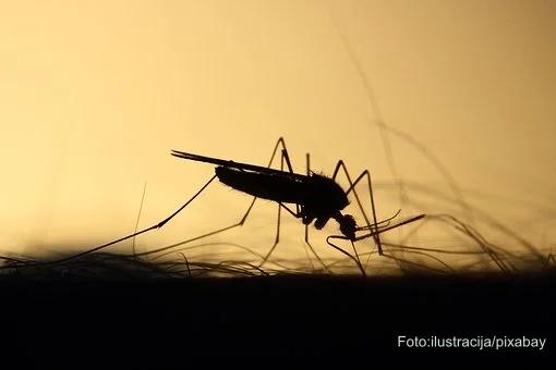 Zaprašivanje komaraca u četvrtak