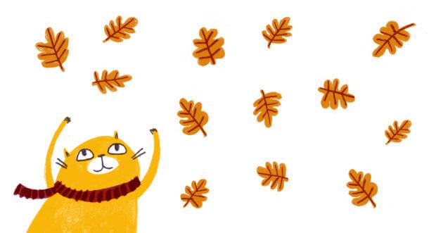 aurora-cacciapuoti-gatto-foglie-autunno