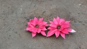 Flowers 2