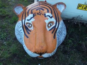 tiger-head