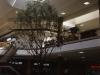 Rogue Valley Mall Medord Oregon
