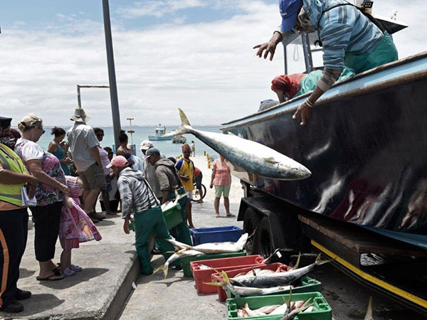 Abalobi, Suedafrika - Kleinfischer im Hafen mit Fang