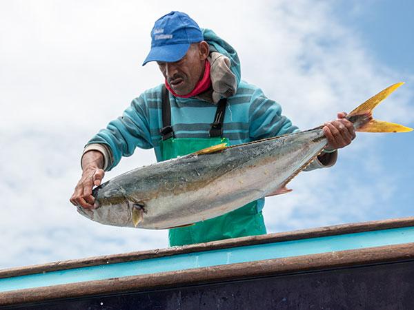 Abalobi -Small-scale fisherman with big fish