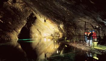 Llanfair-Caverns-&-Farm-Park