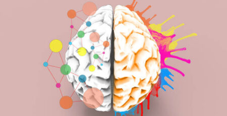 Brain left and right creativity functions Sketch concept / Illustration