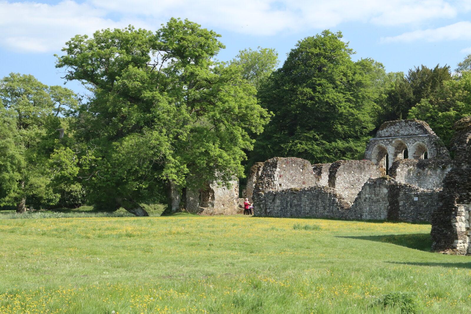 waverley abbey walk