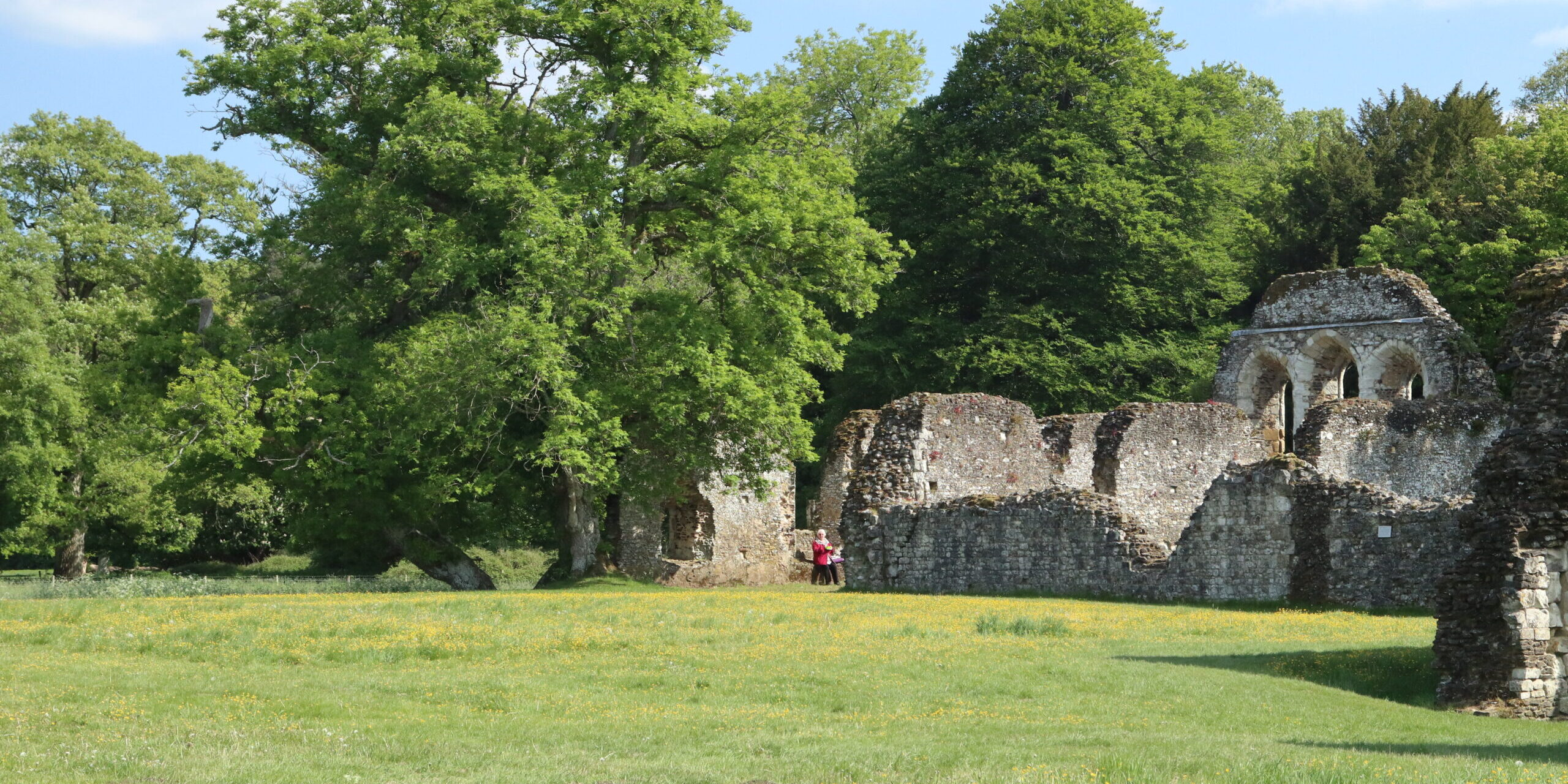 waverley abbey walk