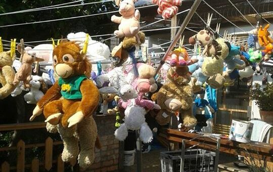 Clean teddies hanging out to dry
