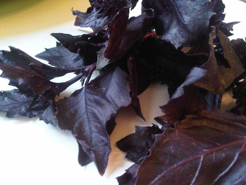 fresh-basil-vinaigrette-2