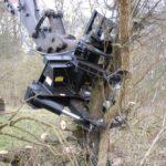 Tree clearance with Tree Shear