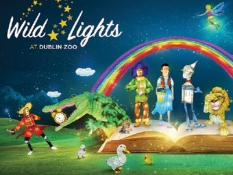 Wild Lights