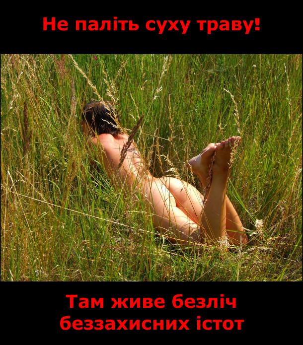 Чи можна палити суху траву?. Не паліть суху траву! Там живе безліч беззахисних істот. Гола дівчина лежить в траві