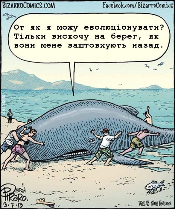 """Смішний малюнок Кит і екологи. """"Кит: - От як я можу еволюціонувати? Тільки вискочу на берег, як вони мене заштовхують назад"""