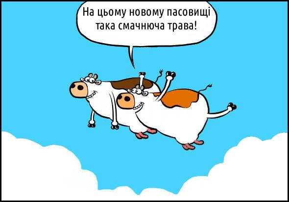 Летять дві корови. Одна каже: - На цьому новому пасовищі така смачнюча трава! Карикатури, комікси, гумор, прикол, веселі малюнки, смішні картинки