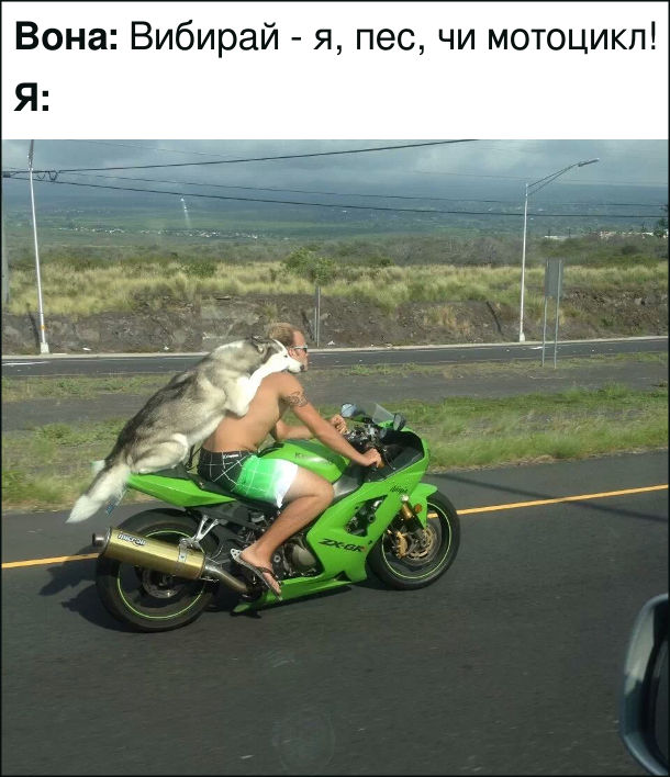 Смішна фотка Мотоцикліст і пес. Вона: Вибирай - я, пес, чи мотоцикл! Я: сів з псом на мотоцикл і поїхав