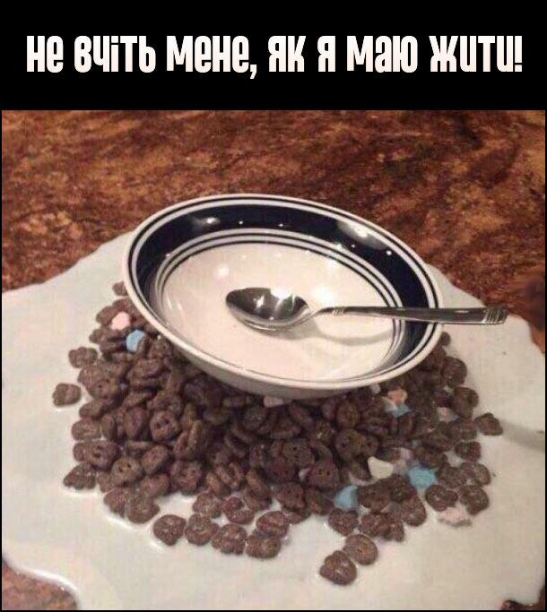 Не вчіть мене, як я маю жити! На фото: на столі розлите молоко, зверху насипані пластівці, а на них порожня тарілка