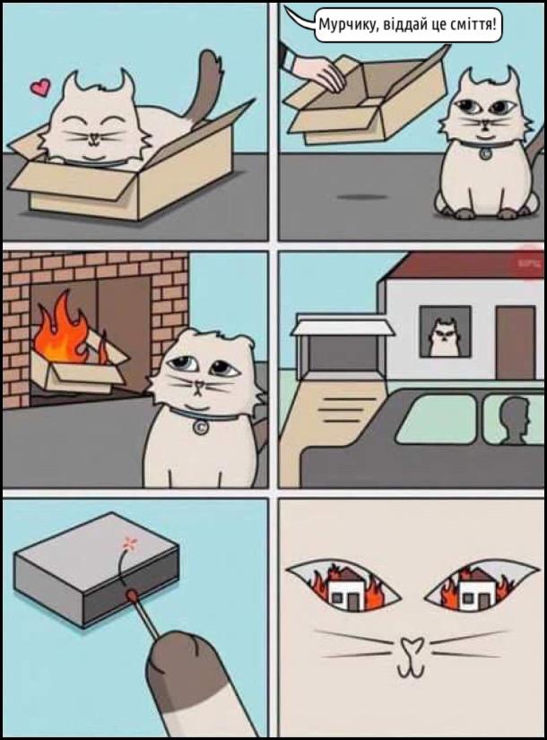 Кіт сидить в картонній коробці. Господар до нього: - Мурчику, віддай це сміття. Забрав коробку і кинув у полум'я каміну. Господарі поїлали з дому а кіт підпалив будинок