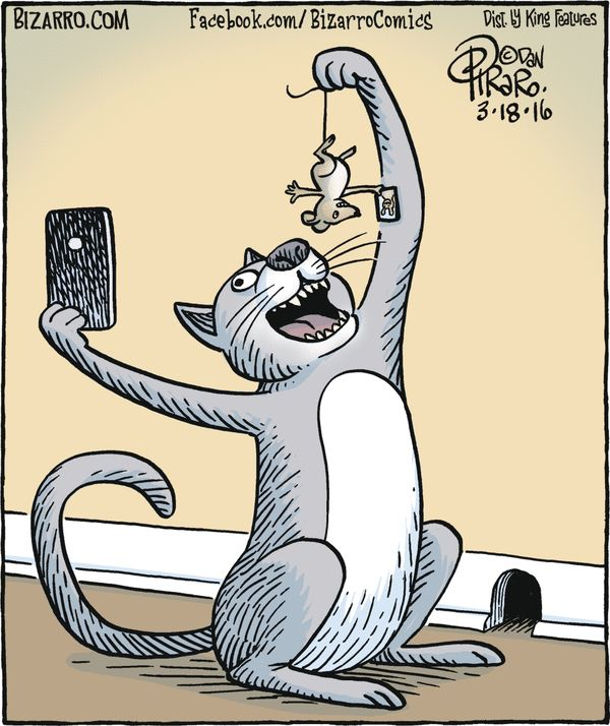 Кіт зловив мишу і перед тим, як з'їсти, робить з нею селфі, тримаючи за хвіст. Миша в цей момент також робить селфі