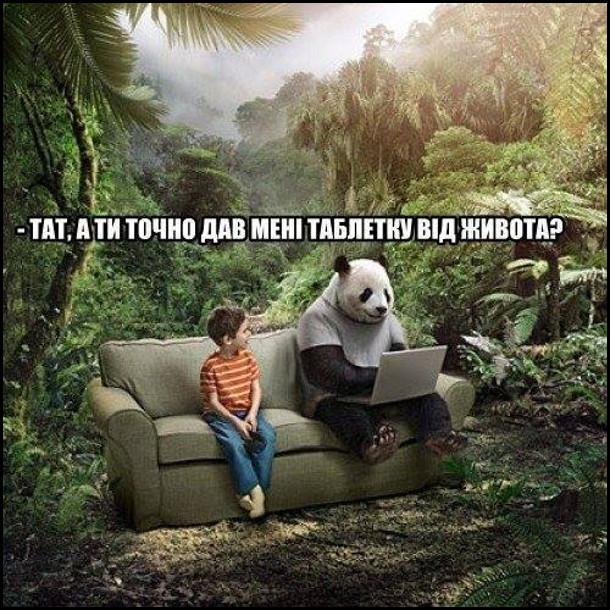 Посеред джунглів на дивані сидить хлопчик і велика панда. Хлопчик до панди: - Тат, а ти точно дав мені таблетку від живота?