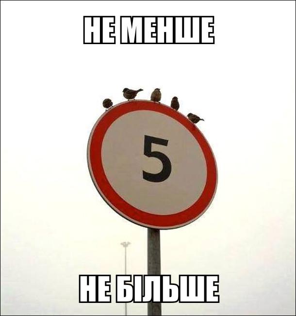 Дорожній знак з цифорю 5. На знакові сидить п'ять пташок, не менше, не більше