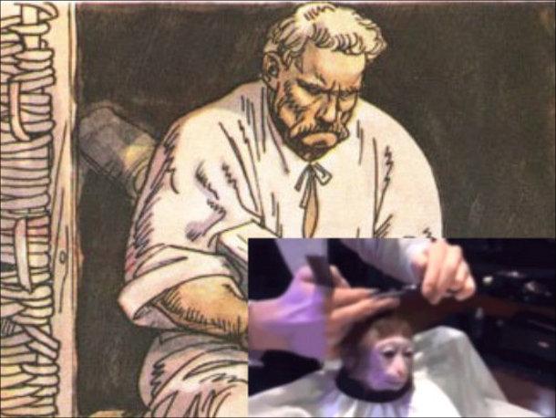 Мем Monkey Haircut (підстригання мавпи). Кайдаш